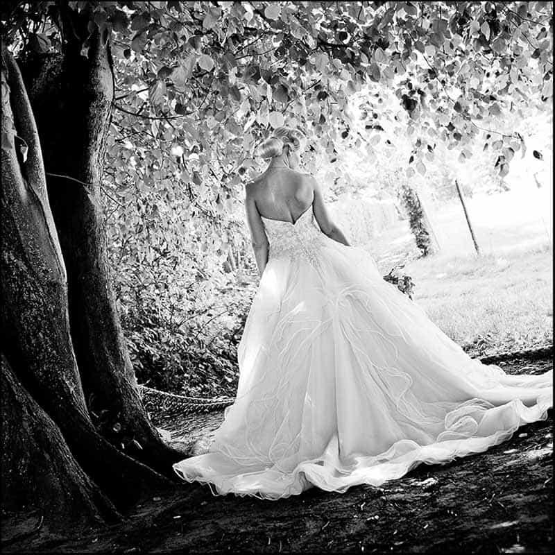 6 mnd. før bryllupet