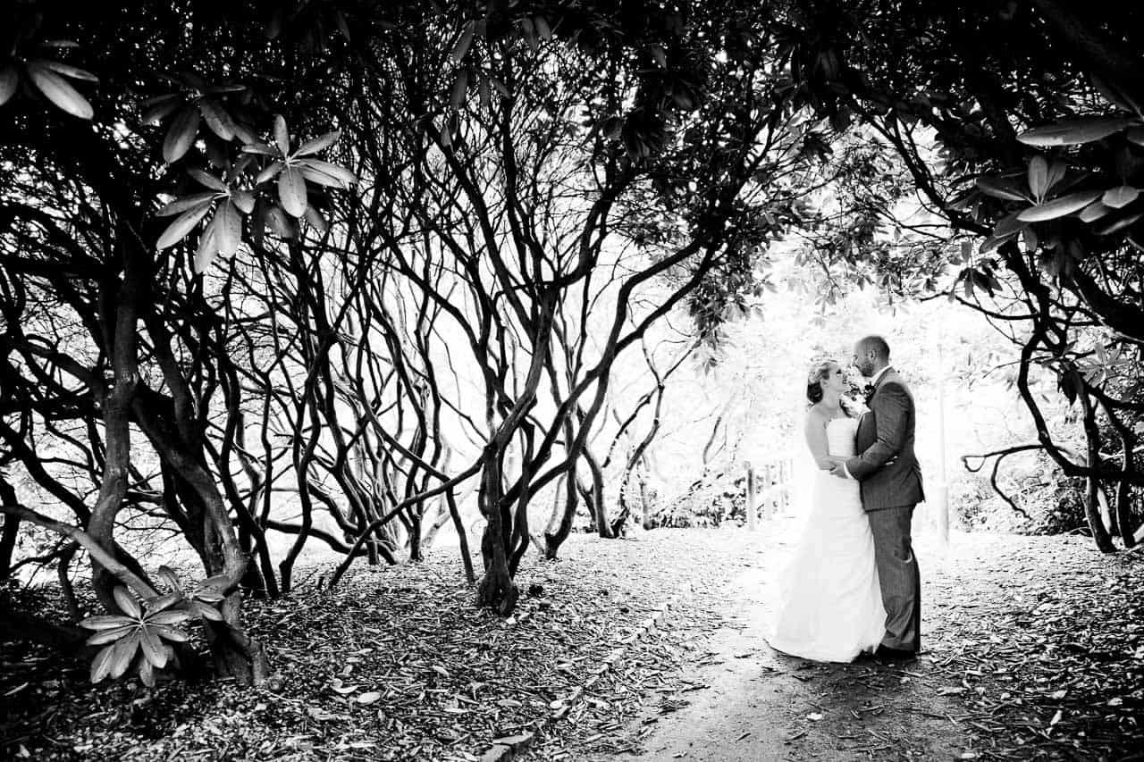 Bryllupper og de mange traditioner