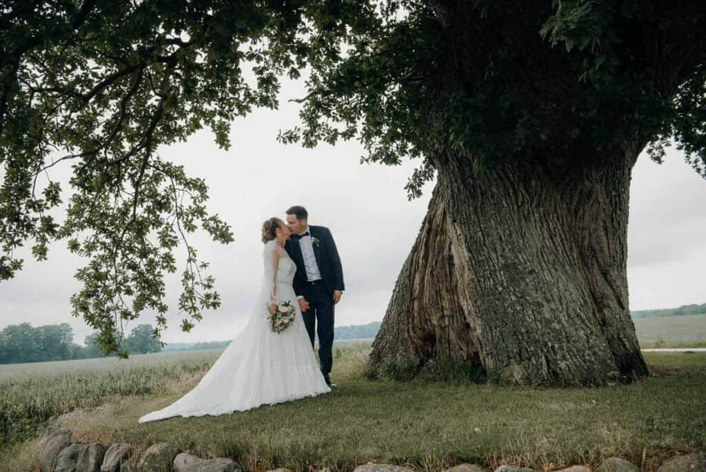 Bryllupsfest og reception på Sonnerupgaard Gods